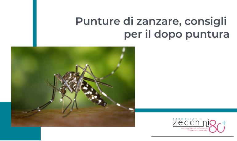 Punture di zanzare, consigli per il dopo puntura